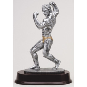 Bodybuilding - Male