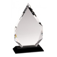 Diamond Crystal Award