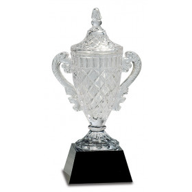Crystal Cup Award