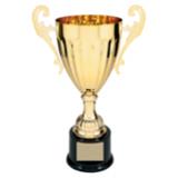 "Metal Cup Trophy - 12"""