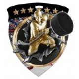 Color Shield Medal - Hockey
