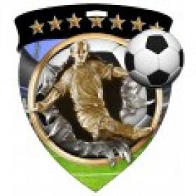 Color Shield Medal - Male Soccer
