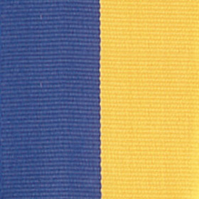 Neck Ribbon - Blue & Gold