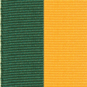 Neck Ribbon - Hunter Green & Gold