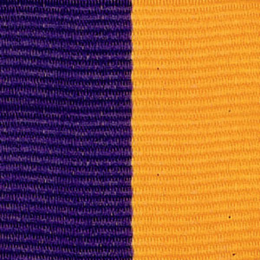 Neck Ribbon - Purple & Gold