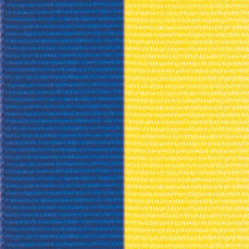 Neck Ribbon - Blue & Yelllow