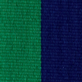 Neck Ribbon - Green & Navy