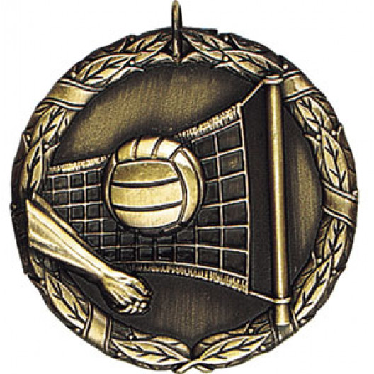 XR-224 Volleyball