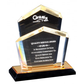 Ceo Chairman Award
