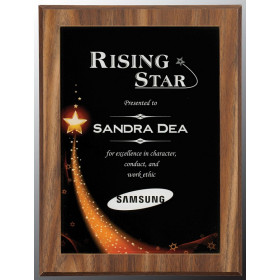 Star Galaxy Acrylic Plaque Plate