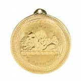 BriteLaser Medal - Swimming
