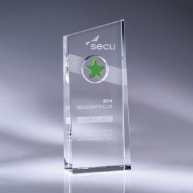 Nebula Award