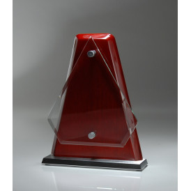 Rosewood Arrow Glass Plaque