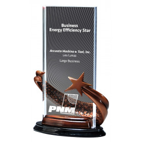Bronze Brilliance Star Award in Rectangle Radiant Pattern