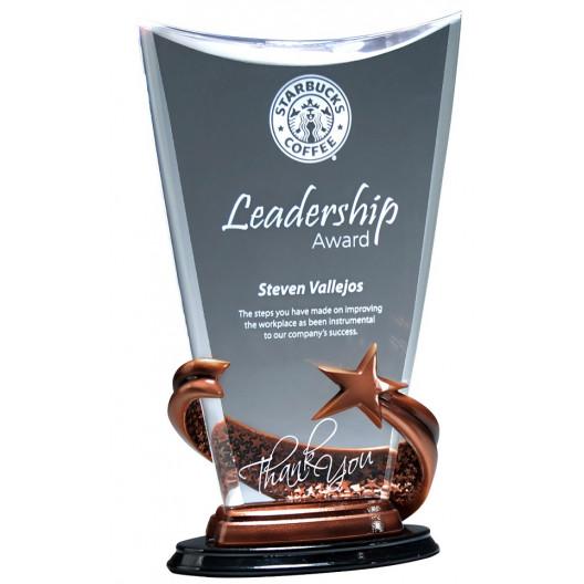 Bronze Brilliance Star Award