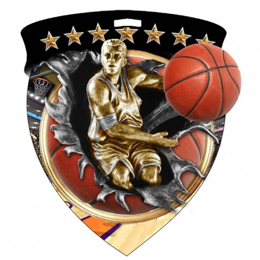 Color Shield Medal - Male Basketball