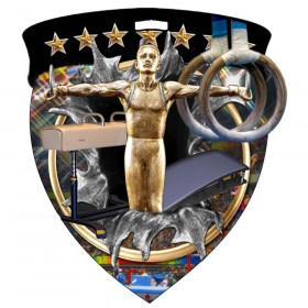 Color Shield Medal - Male Gymnastics