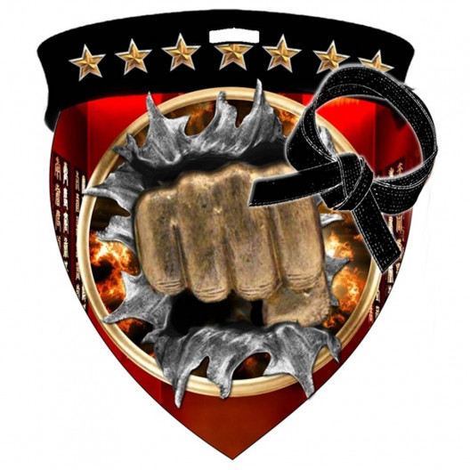 Color Shield Medal - Martial Arts