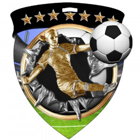 Color Shield Medal - Female Soccer