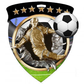 Color Shield Medal - Male Soccer