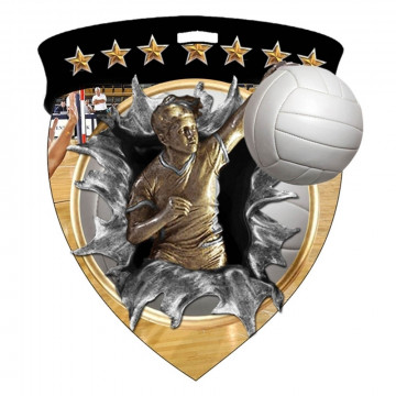 Color Shield Medal - Female Volleyball
