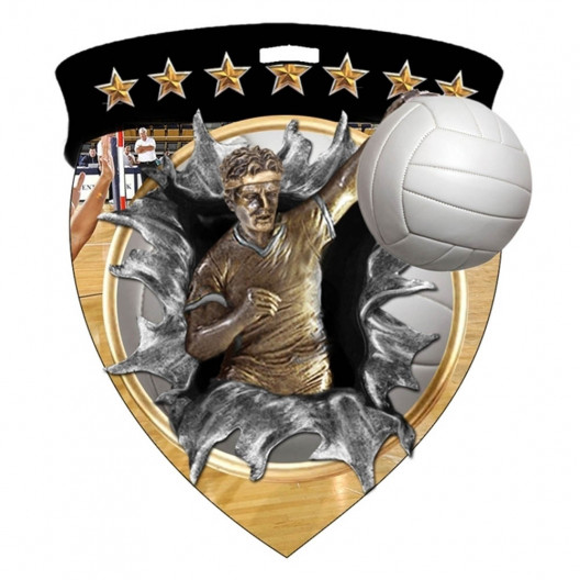 Color Shield Medal - M Volleyball