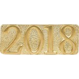 2018 Chenille Pin