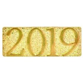 2019 Chenille Pin