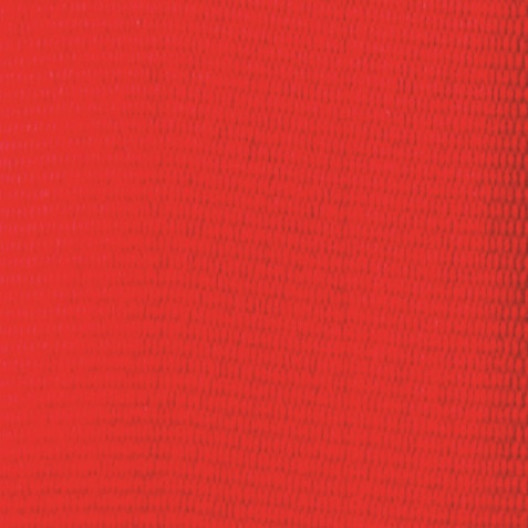Olympic Style Neck Ribbon - Red