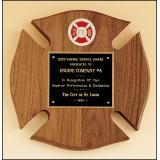 Firematic Shield Award