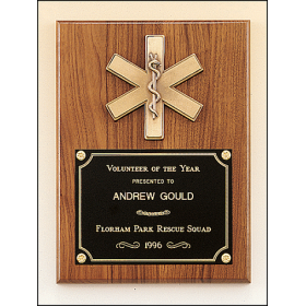 Emergency Medical Award