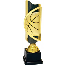 Triumph Basketball Completed Award
