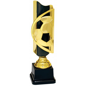 Triumph Soccer Completed Award
