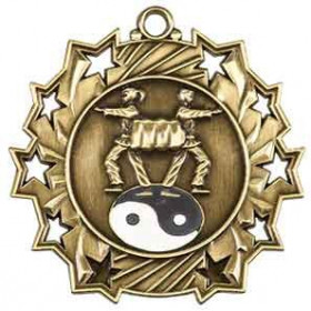 Ten Star Medal - Karate