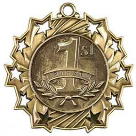 Ten Star Medal - 1st Place